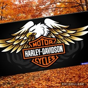 Harley-Davidson Items